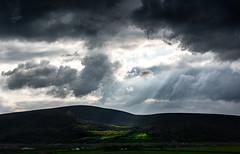 Rays, Ireland (cristiancoser) Tags: landscape ireland travel light rays sun green nikon d810