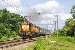 ERS WDG 3A hauling Kannur intercity (Akhil Sanjeev) Tags: cherthala ers kerala locomotive indianrailways alco wdm3a railfanning rail railroad outdoor vehicle train trainspotting
