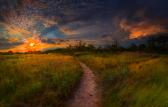 Into the sunset  (kaising_fung) Tags: brooklyn forgotten personal myspace