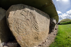 Knowth kerb stone 51 (mythicalireland) Tags: knowth monument stone kerb carvings engraving symbols spiral sunshine shadows sun history prehistory