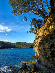 Dark Beach II (elphweb) Tags: falsehdr fhdr seaside trees forest bush foliage australia rocky rocks outdoor