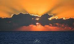 Peek (martinradigan) Tags: sunrise delaware delawareseashore landscape martinradigan ocean oceanscape beach