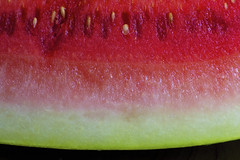 W is for Watermelon (WilliamND4) Tags: thefirstletterofmyname macromondays fruit watermelon food red macro fresh nikon d750 tokina100mmf28atxprod beginswiththefirstletterofmyname