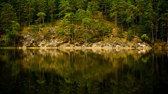 Land of Elves and Trolls (Jens Haggren (mostly off)) Tags: olympus em1 forestlake forest trees lake water reflections sweden