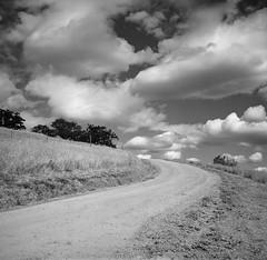 Up the road. (ASHLANDJET) Tags: film rolleiflex 35e planar ilford xp2 meduimformat 120 monochrome blackandwhite oregon square tlr yellowfilter clouds vintagecamera analog road