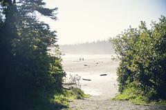 Beached as. (JosefineKphotography) Tags: canon canonmoment canoneos5dmarkiii 5dmarkiii canada britishcolombia bokeh beyondbokeh ocean beach tofino longbeach vancouverisland