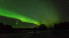 Aurora (JH') Tags: nikon nikond5300 nature northernlights d5300 sky sigma sweden stars 1020 2016 heaven trees fall field forest auroraborealis aurora borealis autumn longexposure exposure landscape road