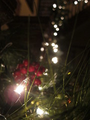 12/12/12 {344/366} (Liz.Photography) Tags: christmas lights berry pretty bokeh banister miracles