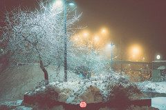 355/365 Fog Turns Into Frost (Jussi Hellsten Photography) Tags: world oneaday project finland phot