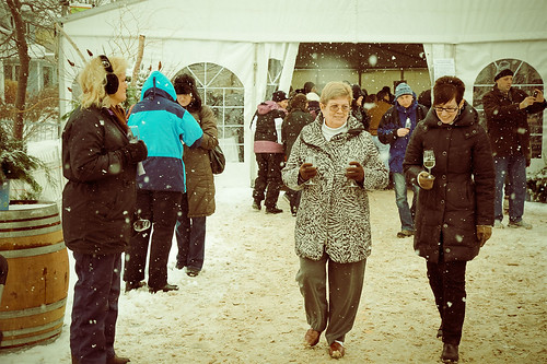 WINE COUNTRY ONTARIO - Twenty Valley Winter Winefest