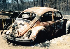 Burned VW Bug (sjrankin) Tags: film car vw bug fire scanned 1994 damaged destroyed burned vwbug wildfire 1january2013 8august1993