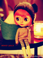 ADAD 2013, 3/365