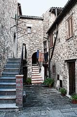 2 stairways (TXdragonfly1958) Tags: door windows italy plants stairs laundry tuscany collesulrigo