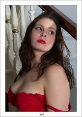 Laurence - 160 (bruxelles5) Tags: brussels sexy beauty nude model women belgium belgique modeling gorgeous lingerie pinup cervin strobist laurencegaussiaux