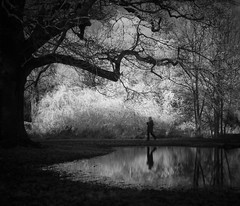 A stroll in the park (jfsouto) Tags: uk reflection pond infrared f25 hertfordshire watford cassioburypark hoyar72filter voigtlandercolorskopar35mmf25 january2013landscape