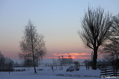Winterlandscape (Thijs Tennekes) Tags: winter cloud sun white color colour tree netherlands clouds landscape january thijs poler thys stolwijk 2013 tennekes