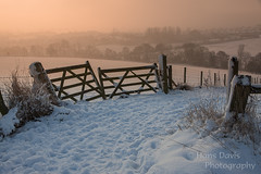 Misty morning (Sadloafer) Tags: uk morning sun mist inspiration snow cold field grass weather horizontal fog mystery sunrise fence outdoors photography gate frost nopeople wentworth direction fields copyspace exploration scenics freshness snowscape southyorkshire tranquilscene woodenpost moodysky colourimage sadloafer hansdavisphotography