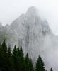 Grigioverde (Culdefeu) Tags: mountain sara estate rudy agosto val arwen montagna vacanze 2010 sappada satine visdende grigioverde