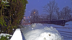 Slippery (Leifskandsen) Tags: road street camera leica winter snow cold nature wet norway living scandinavia slippery brum bekkestua leifskandsen skandsenimages
