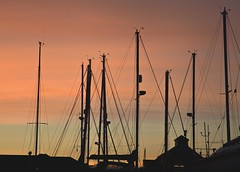 Silhouettes at the end of the day - Explore 6.2.2013 (Jo Evans1 - off and on for a while) Tags: sunset swansea silhouettes yachts masts sa1 boatyard smq