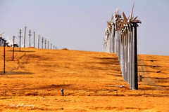 Windmills world~ () Tags: outdoor sun windmills heat daytime livermore california