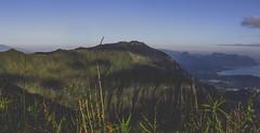 Above the clouds (anthonyvillar) Tags: hawaii oahu hawaiian style haiku stairs stair way heaven paradise 808