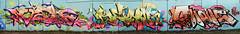 Dashe   Defy  Shane (HBA_JIJO) Tags: streetart urban graffiti vitry vitrysurseine art france hbajijo wall mur painting letters peinture lettrage lettres lettring shane writer paris94 spray panorama thebullshitters mosdefynite