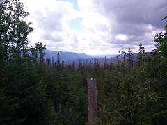 016 - Parc national de la Gaspsie : Mont Xalibu (Arfphandal Forfal Forphan) Tags: trip qubec gaspsie forest tree arbre fort nature water eau park landscape
