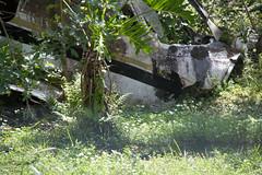 Gatorland-0732.jpg