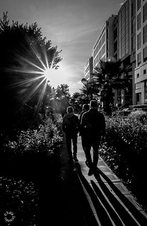 The sunset walk