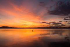 Burst of colour (ImagesByLin) Tags: canon lakemacquarie colour colours contrast dramatic lake mirrorimage sunset