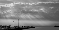 On the pier (Davide Bonaldo) Tags: bw goldenhour landscape trieste molo audace sunset cloudy pier sea magic light natural beautiful moment people crowd friuliveneziagiulia italia