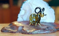 MACRO MONDAY: The First Letter of My Name (Cepreu K) Tags: macromonday thefirstletterofmyname amber glass stone sheep bighornsheep ram