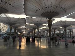 IMG_0805 (aurangzb) Tags: almasjid alnabawi
