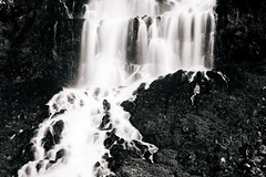 subtleties of the fall (almostsummersky) Tags: monochromatic moss plans softwater water idaho statepark rocks longexposure summer power waterfall travel wendell blackwhite thousandsprings stream ritterislandstatepark cliff hydroelectric unitedstates us