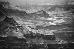 Colorado River (greenschist) Tags: grandcanyonnationalpark blackwhite arizona coloradoriver usa