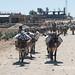 Salt caravan in Wukro, Tigray