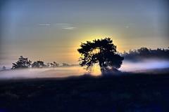 Weerfoto dinsdag 27 september (Omroep Brabant) Tags: loonseendrunenseduinen duinen hardlopen weer weerfotos herfst mist zonsopkomst zonsondergang brabant kaastheuvel loon op zand