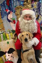 IMG_0165 (PMC Fresno) Tags: santa pet photos center medical spa pmc