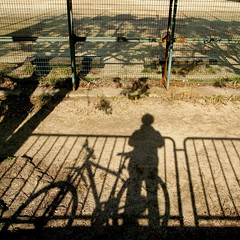 me, a bicycle, and a tree (SOVA5) Tags: shadow tree me bicycle ricoh grd grd2 grdigital2