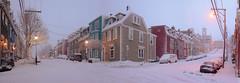 Old St. John's (SignalHillHikerPhotography.com) Tags: snow canada architecture newfoundland landscape scenery labrador stjohns