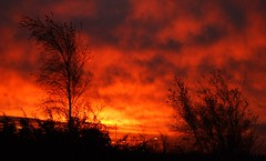 Dublin Ireland Blazing Sunrise (gallftree008) Tags: ireland dublin strange sunrise fuji finepix fujifilm blaze effect musictomyeyes blazing amazingnature strangeeffect a900 competitiontagged allphotosxpressus allxpressus bestcapturesaoi ringexcellence dblringexcellence tplringexcellence ringofexcellencegroup eltringexcellence eliteringofexcellence niceasitgets niceasitgetslevel1 niceasitgetslevel2 pjg008 niceasitgetsawards6 pjg100