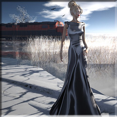 crossing... (Renee_ Parkes) Tags: renee secondlife dreamworld ccd diva belleza gizza jamman slfashion dieselworks reneeparkes