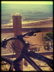 cycling the shore. (Qarloski) Tags: flickrandroidapp:filter=cairo