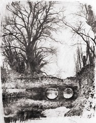 Medieval Bridge and tree (Cyanotype toned by coffee) (SCTfinearts) Tags: bridge blackandwhite tree coffee print landscape creative printing toned cyanotype creativo