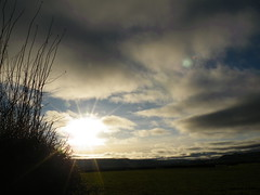 WHAT IS IN THIS CLOUD? PURPLE DUST? (rospix) Tags: uk winter sky cloud sun colour nature field silhouette wales clouds landscape countryside purple january dust 2013 chemcloud geoengineering rospix