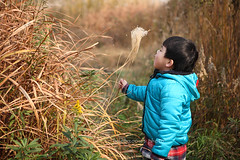 _MG_3735 (baobao ou) Tags: family boy kids funny asia child 52weeks familygetty2011