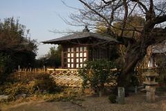 (eyawlk60) Tags: winter favorite tree japan stone canon garden temple eos kyoto   lantern   uji   40d  flickraward
