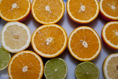 Oranges and Lemons (SigHolm - Very Busy) Tags: lemons oranges lime appelsnur appelsna strnur strna