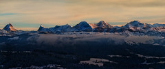 Their Majesties [Explored #12] (Sibilus_Basilea) Tags: sunset alps switzerland europe sonnenuntergang top swiss eiger berner bernese majesty jungfrau mnch oberland schreckhorn finsteraarhorn majesties mygearandme mygearandmepremium
